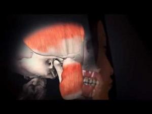 Stress May Cause Teeth Grinding